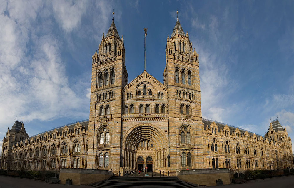 Natural History Museum in London. Photo Credit: Diliff via Wikimedia Commons.